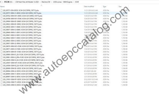 JCB All Module Flash File 12 (3)